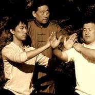 Masters of Taijiquan