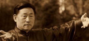 Taijiquan Chen - houževnatost a stabilita