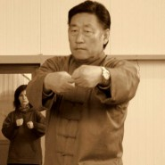 Pushing hands Taijiquan 3 – Chen Xiaowang a Chen Bing