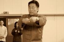 Chen Xiaowang taijiquan – Xin Jia Yi Lu