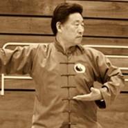 Pushing hands Taijiquan 4 – Chen Xiaowang a Chen Bing