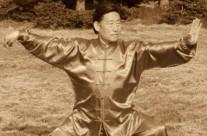 Tchaj-ťi – Velmistr Chen Xiao Wang