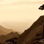 Tchaj-ťi – práce která nosí výsledky pozvolna