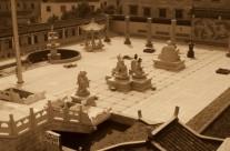 Tchaj-ťi čchűan (taiji quan) stylu Čchen a Parkinsonova choroba
