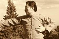 Grandmaster Chen Xiaowang punch
