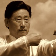 Tchaj-ťi úder mistra Ćhen Siao-wanga